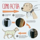 Collar Seresto, antiparasitario para perros