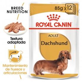 Pouch Royal Canin Dachshund Teckel