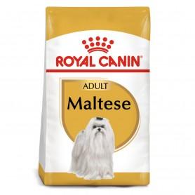 Royal Canin Maltese - Bichón Maltés Adult