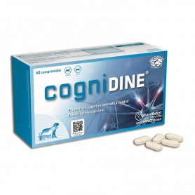 Cognidine 60 comp.