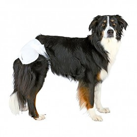 Pañales ultra absorbentes para perro, hembra