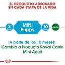 Royal Canin Mini Junior, pienso para cachorros mini