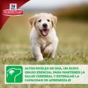 Pienso Hill's Science Plan Puppy Healthy Development, ayuda con el desarrollo cerebral
