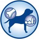 Dog Chow Puppy Pollo ayuda al crecimiento de huesos y dientes