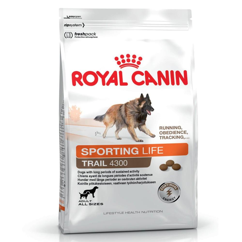 Royal Canin Sporting Life Trail 4300, Pienso para perros Piensoymascotas Formato Sacco 15 Kg